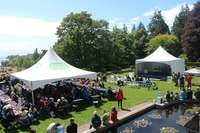 An overview of the food tent and stage, as the skies cleared.